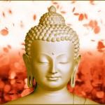 Cõi Phật A Di Đà có thật không?