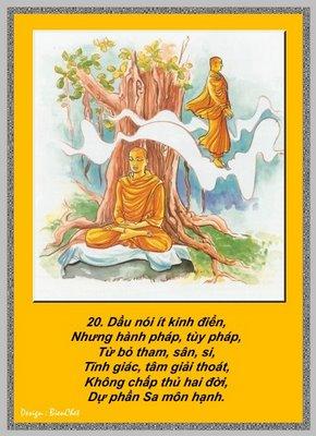 Lời Phật Dạy - Kinh Pháp Cú 20