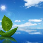 66 lời Phật dạy về cuộc sống