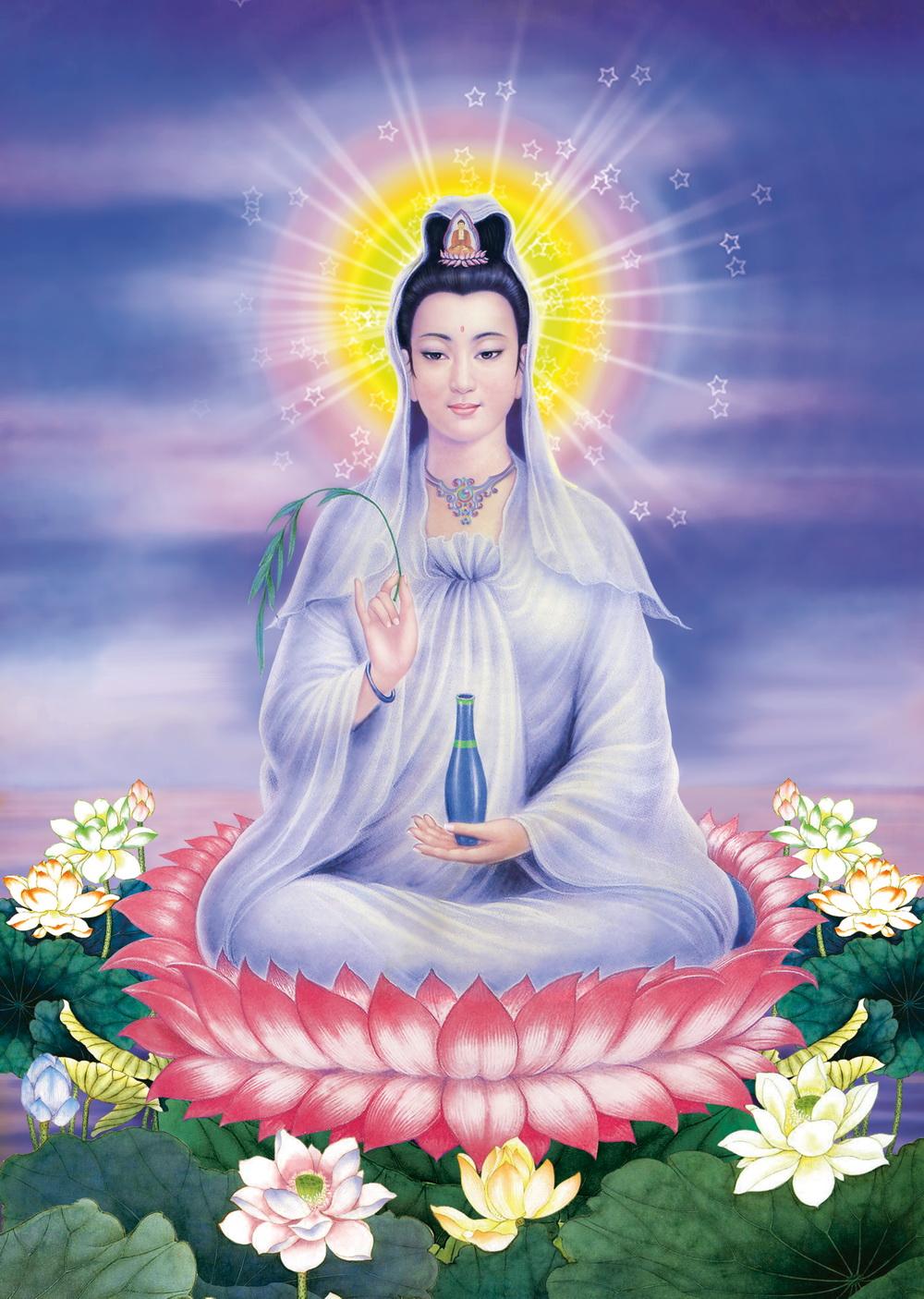 H 236 Nh Quan Thế 194 M Bồ T 225 T Lời Phật Dạy